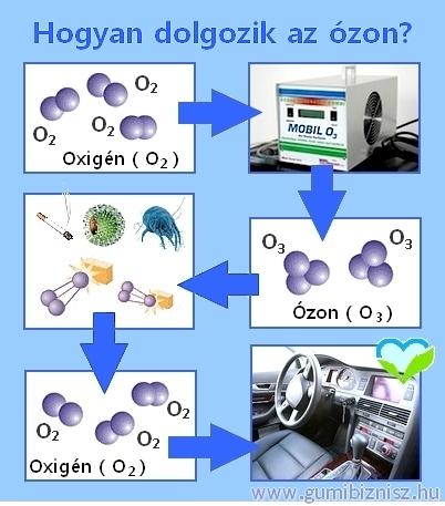 igy-dolgozik-az-ozon.jpg